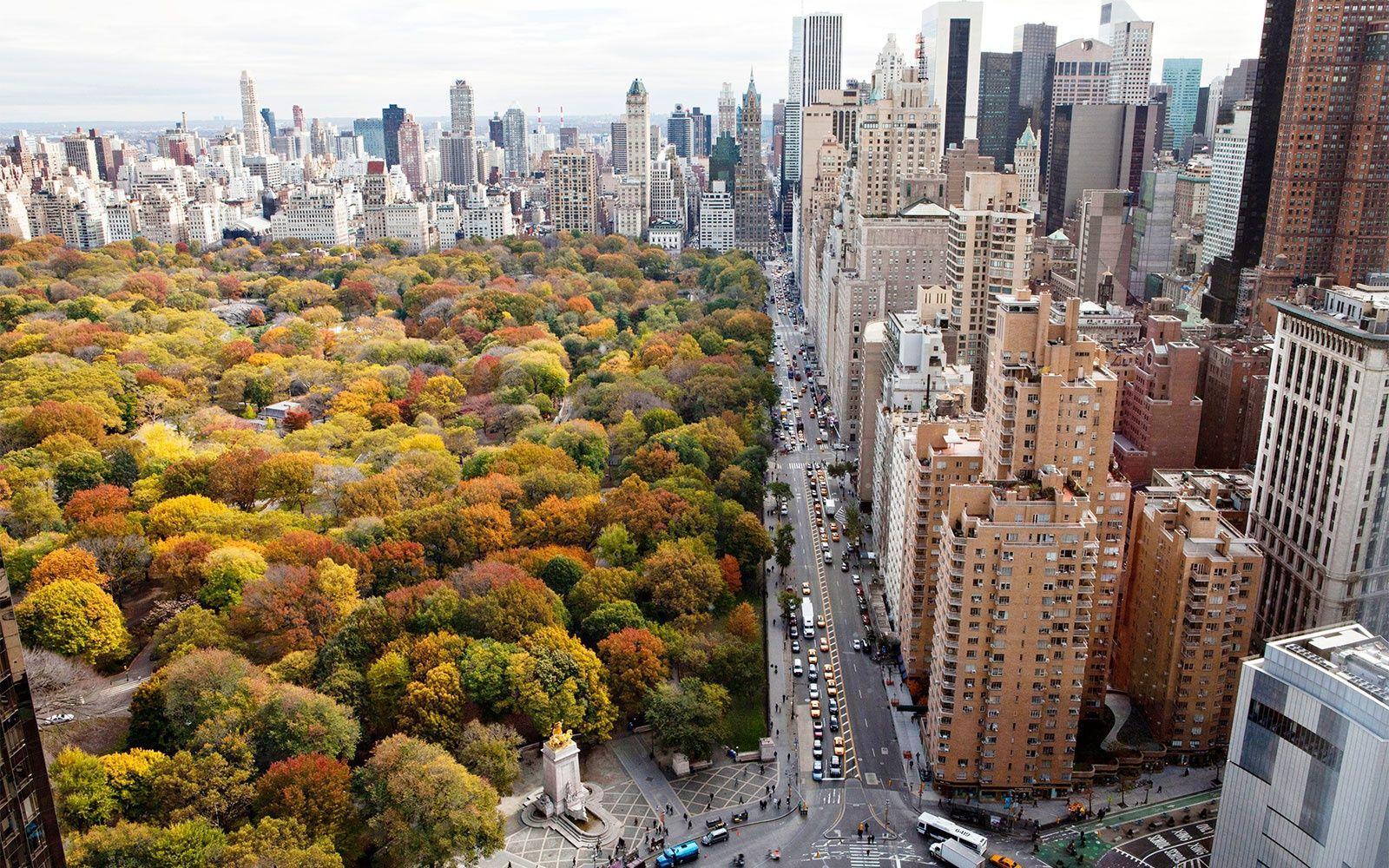 new york city fall에 대한 이미지 검색결과