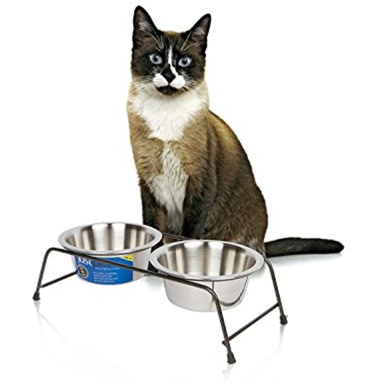 Cat bowl for food water with elevated stand cat diner