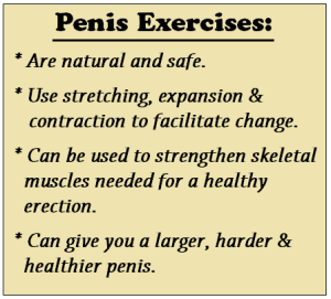 Safe Penis Exercises
