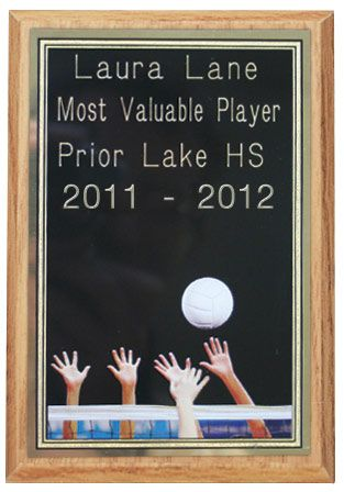 Volleyball Engraved Award W Large Plate Midwest Volleyball Warehouse Engraved Awards Prize Gifts Camp Awards