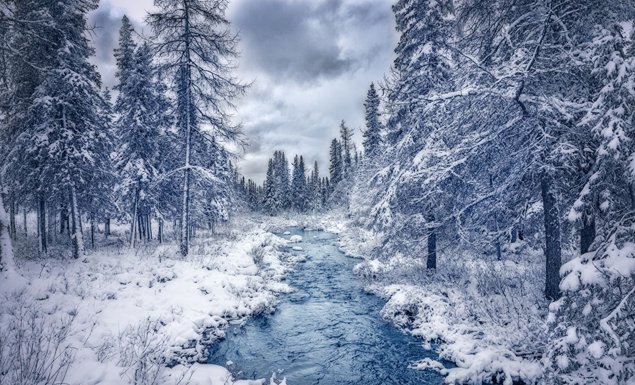 Nunavik Quebec Canada In 2020 Winter Landscape Photography Winter Photography Winter Forest