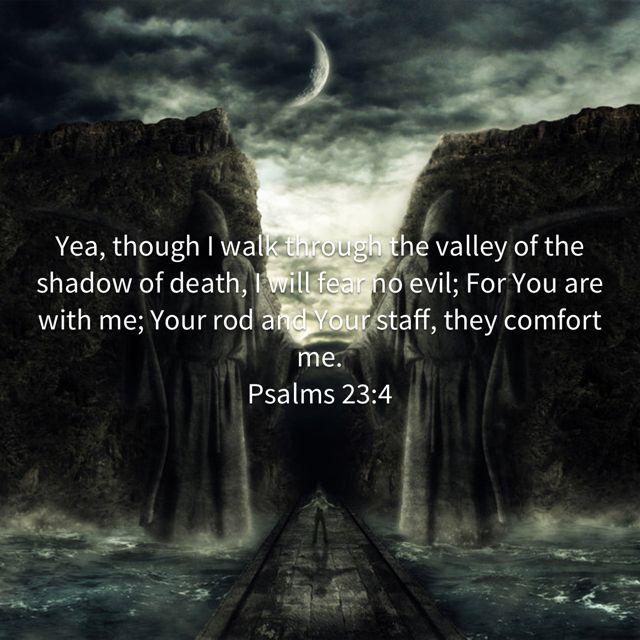 Pin By Lauren Bernstein On Bible Psalms Bible Bible Apps