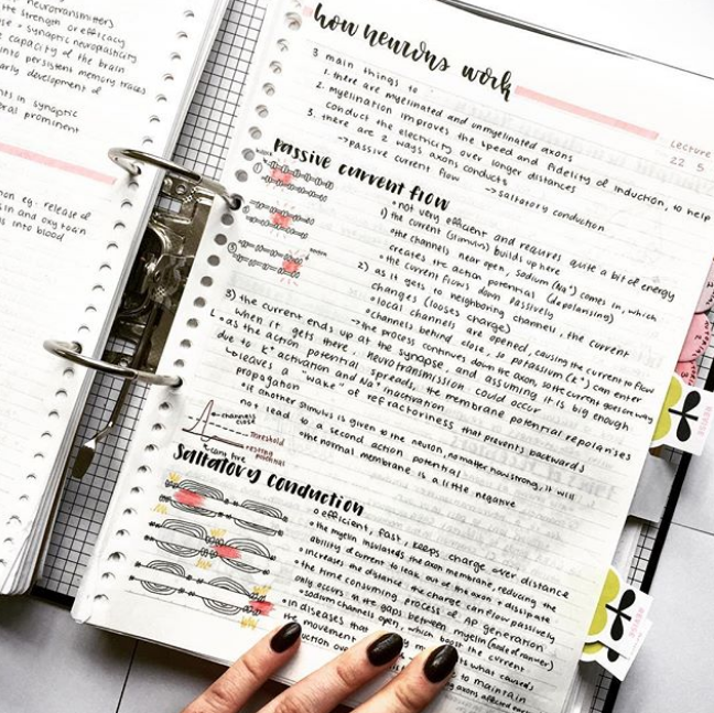 22 Study Notes Which Make Your Handwriting Look Like A