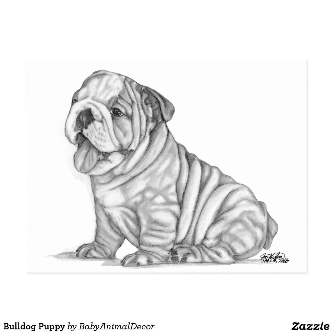 Bulldog Puppy Bulldog Puppies Puppies Bulldog