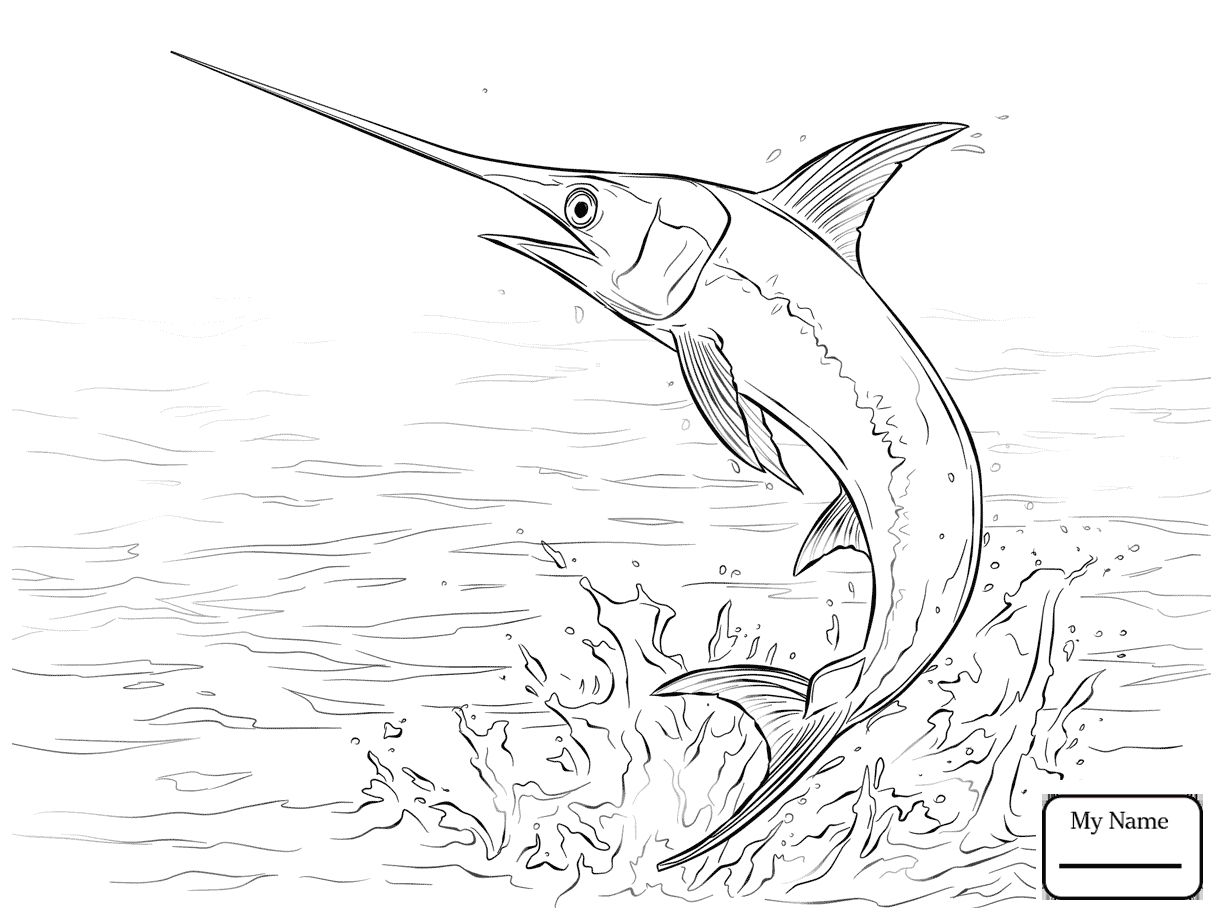 Swordfish Coloring Pages Gallery