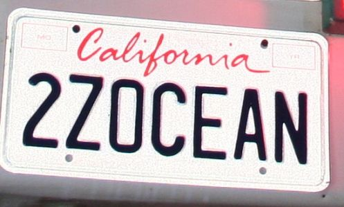 Funny License Plates Two Zee Ocean Funny License Plates