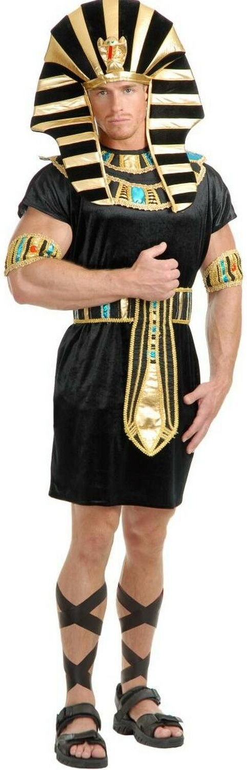 King Tut Egyptian Adult Costume  sc 1 st  Pinterest & King Tut Egyptian Men Costume | Egyptian Costumes | Pinterest ...