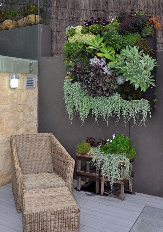 Wisteria Flower Corner Succulent Wall Hanging Vertical Garden