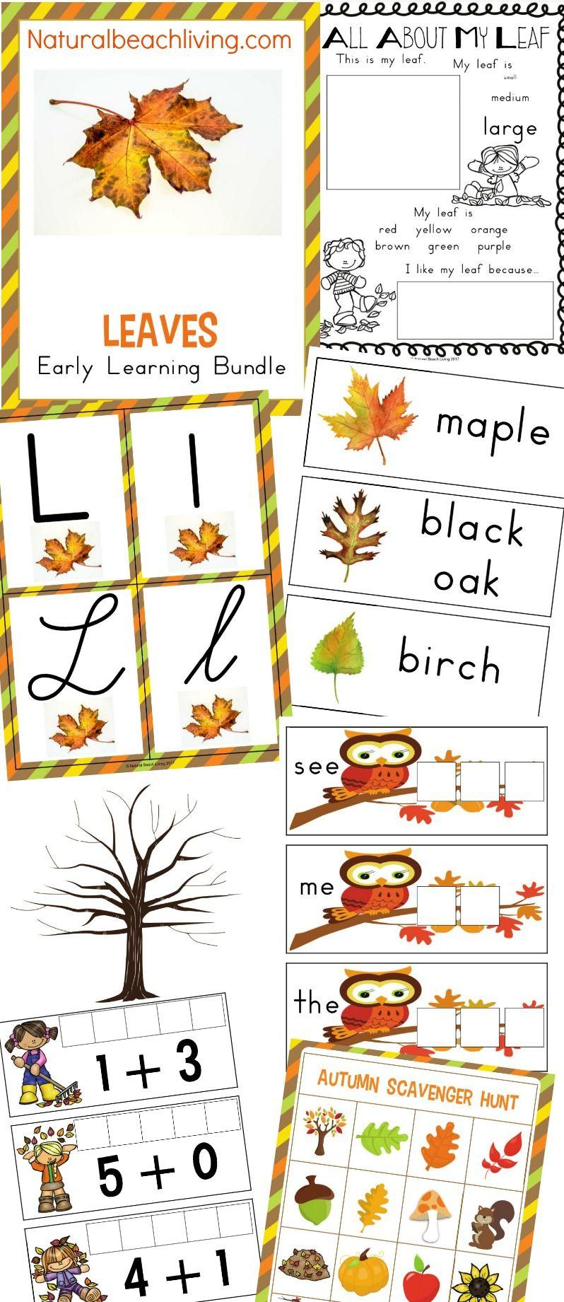 The Best Kindergarten And Preschool Leaf Theme Lesson Plan Preschool Themes Leaf Activities Preschool Re Fall Sensory Bin Preschool Themes Leaf Lesson Plans [ 1841 x 798 Pixel ]