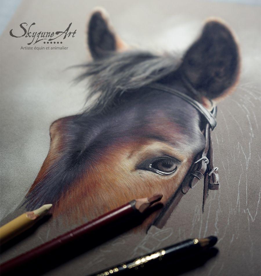 Epingle Par Maeveoliviaart Sur Horse Drawing Ideas Animalier