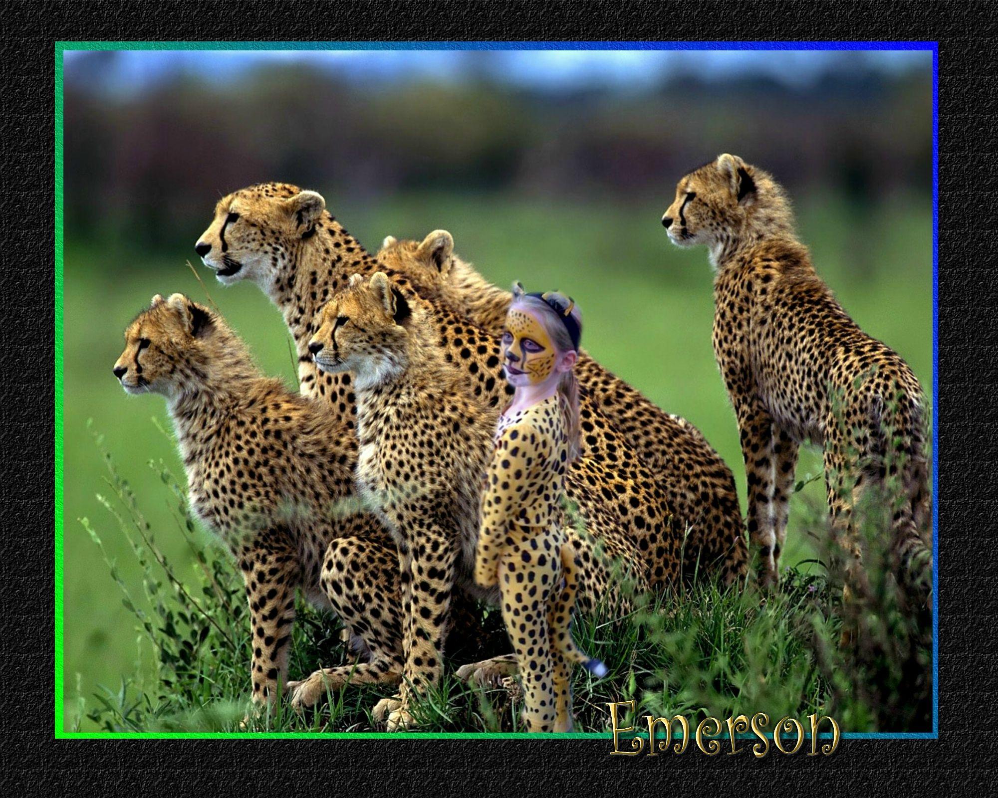Cheetah costume Cheetah costume, Diy halloween costumes