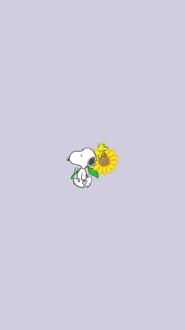 IPhone Snoopy Wallpaper Charlie Brown: Naver blog - Woman Colorful hairstyles