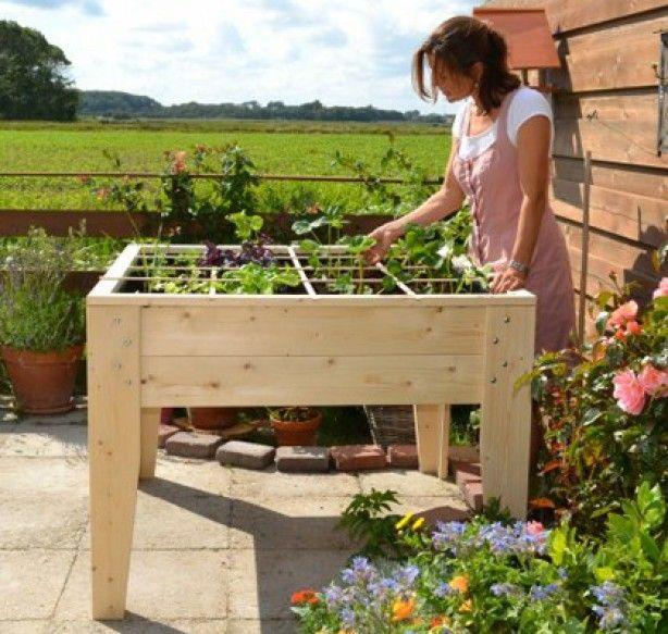 Bekend moestuin tafel idee | Tuin - Backyard vegetable gardens, Vegetable QJ09