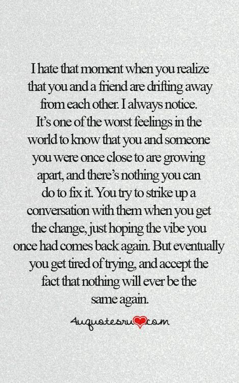 Friend Lost Quote : friend, quote, Image, Result, Quotes, About, Losing, Friend, Friends, Quotes,