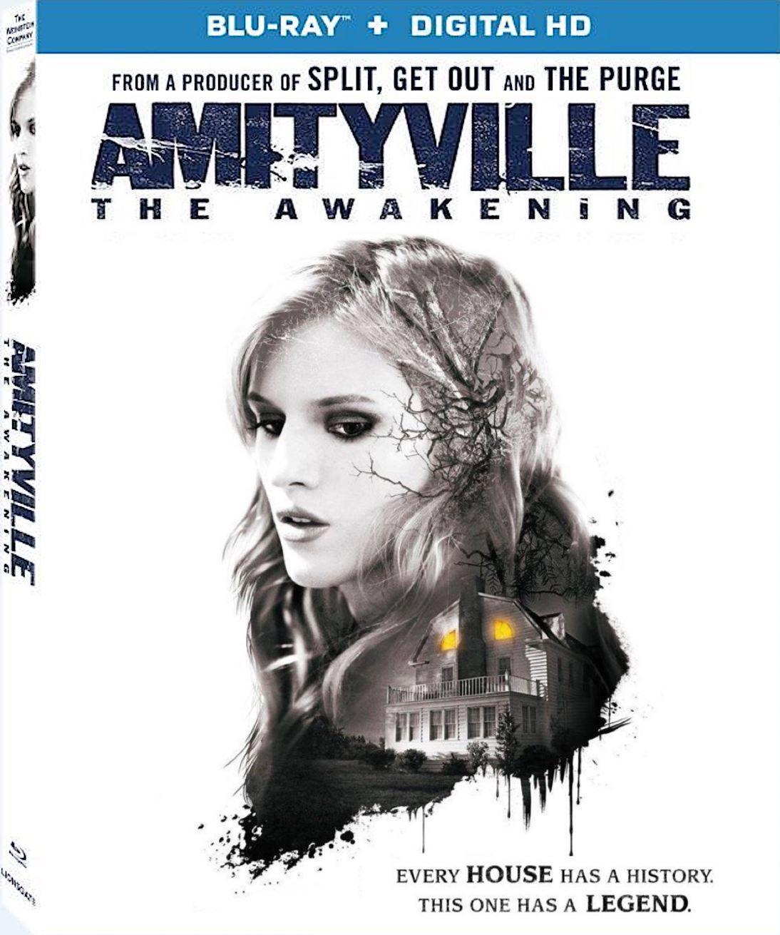 Amityville - The Awakening (2017) 720p BluRay x264 ESubs AC3 Dual Audio [Hindi DD2.0 + English DD2.0]