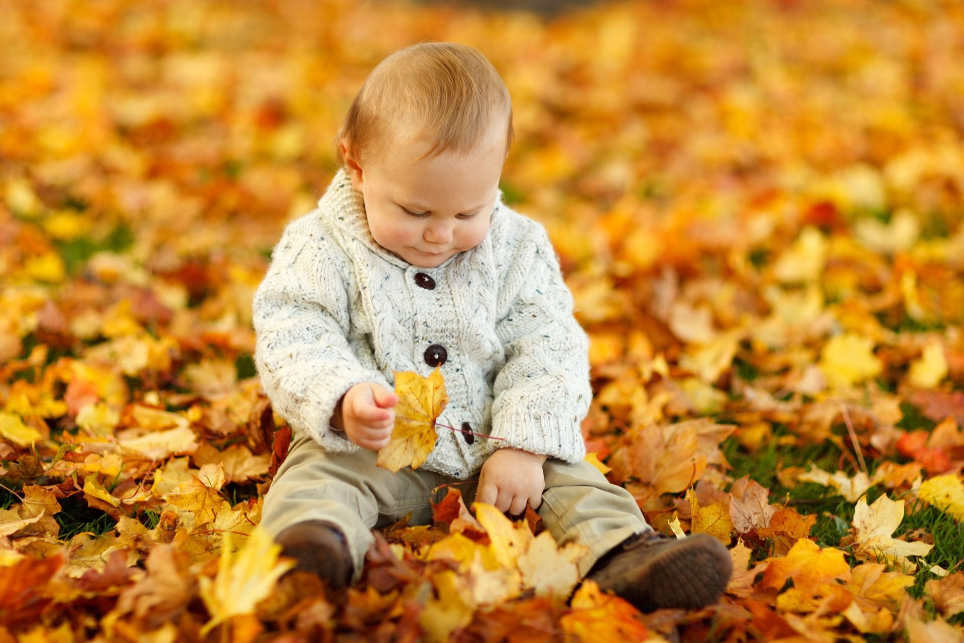 The World is just so amazingly full of new things to see...? Help your Baby to enjoy the fun of nature... Great parenting guides to be found on BayBay.online