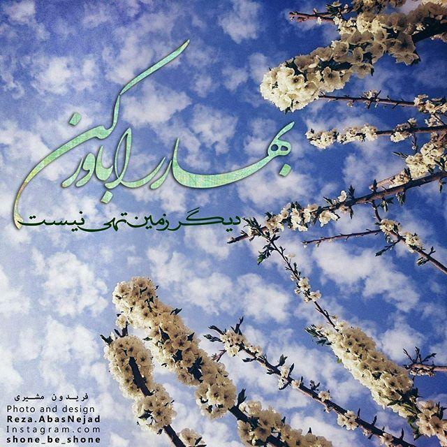 شونه به شونه On Instagram باز كن پنجره ها را كه نسیم روز میلاد اقاقی ها را جشن میگیرد و بهار روی هر شاخه كنار هر برگ شمع رو Persian