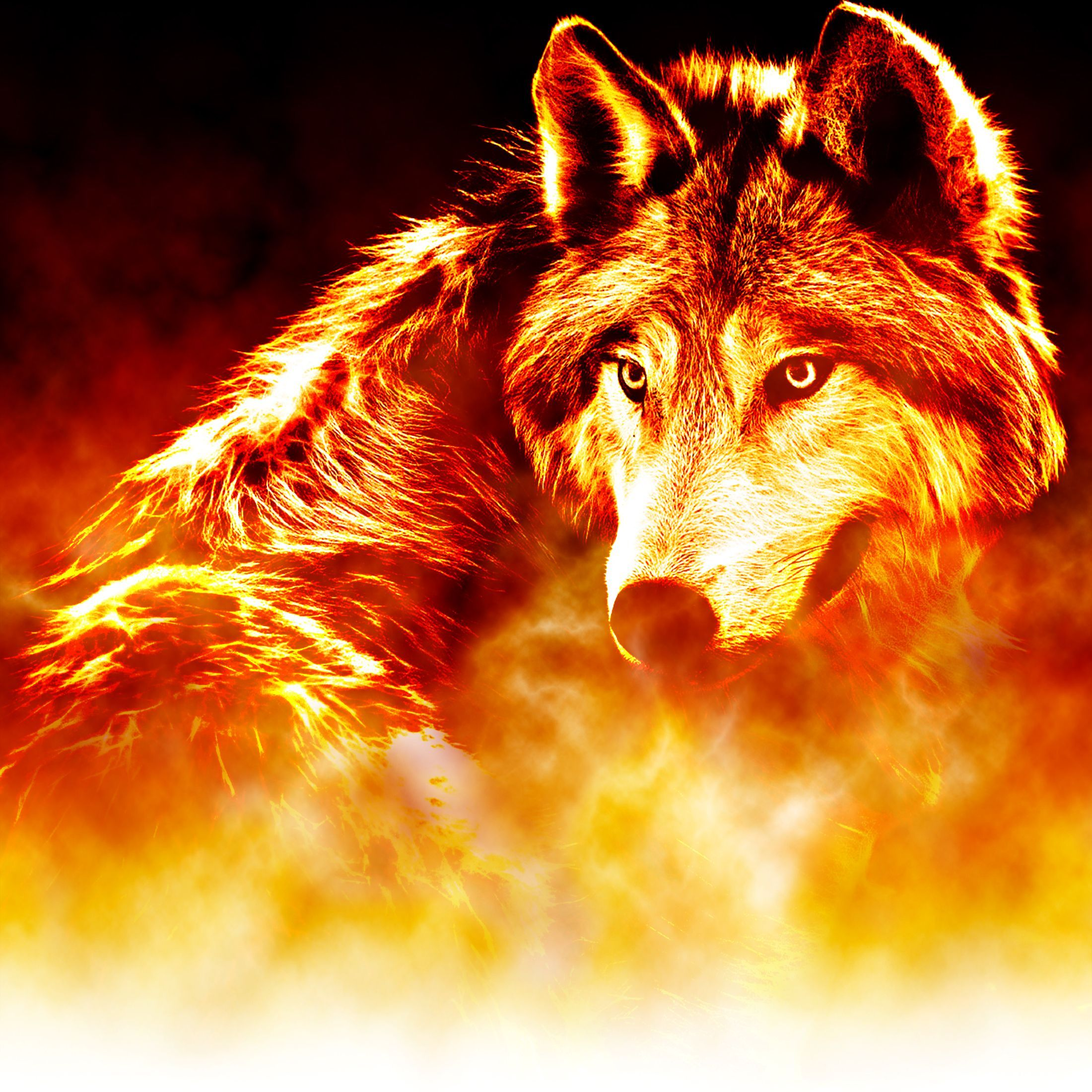 Epic Fire Wolf Wallpaper More At Https Www Ohiocan Org Epic Fire Wolf Wallpaper Html Wolf Wallpaper Smoke Art Ice Wolf Wallpaper