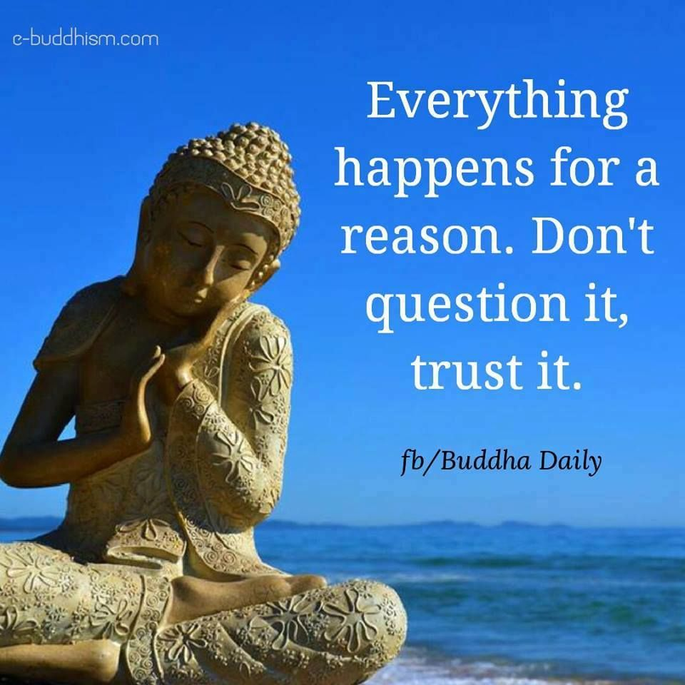 Meditation Quote Pinosree On Quotes That Inspire Me  Pinterest  Buddha 2017