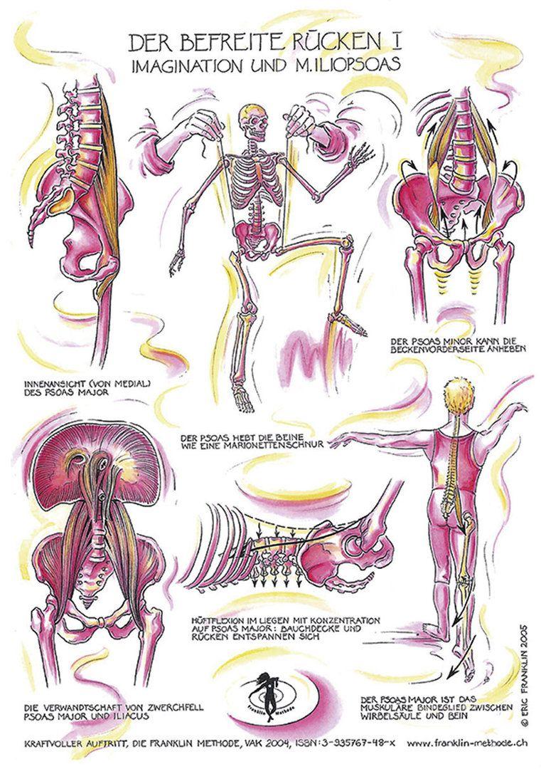 Zum Produkt | Yoga Posen | Pinterest | Produkte, Gesundheit und Anatomie