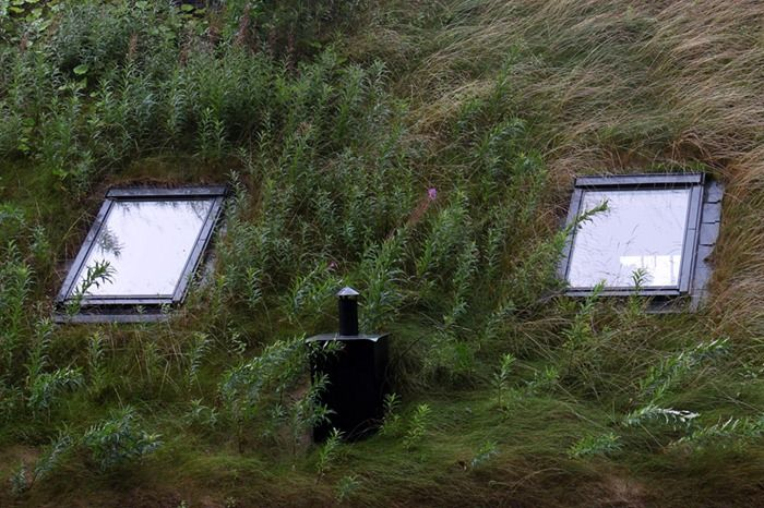 Beautiful Norwegian Foliage Covered Green Roofs Toiture