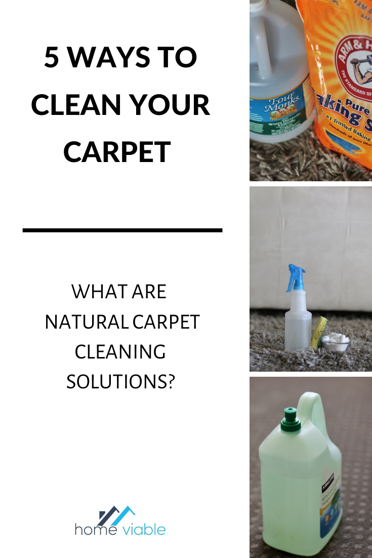 How To Clean Carpet Without Using A Carpet Cleaner Homeviable In 2020 Stain Remover Carpet Carpet Cleaners Cleaning Carpet Stains