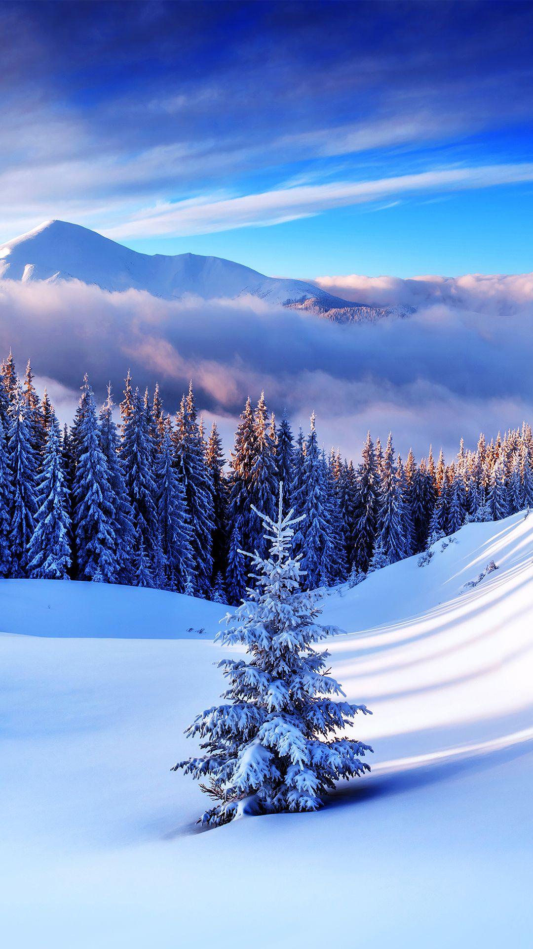 Winter Mountain Tree iPhone 6S Plus Wallpaper