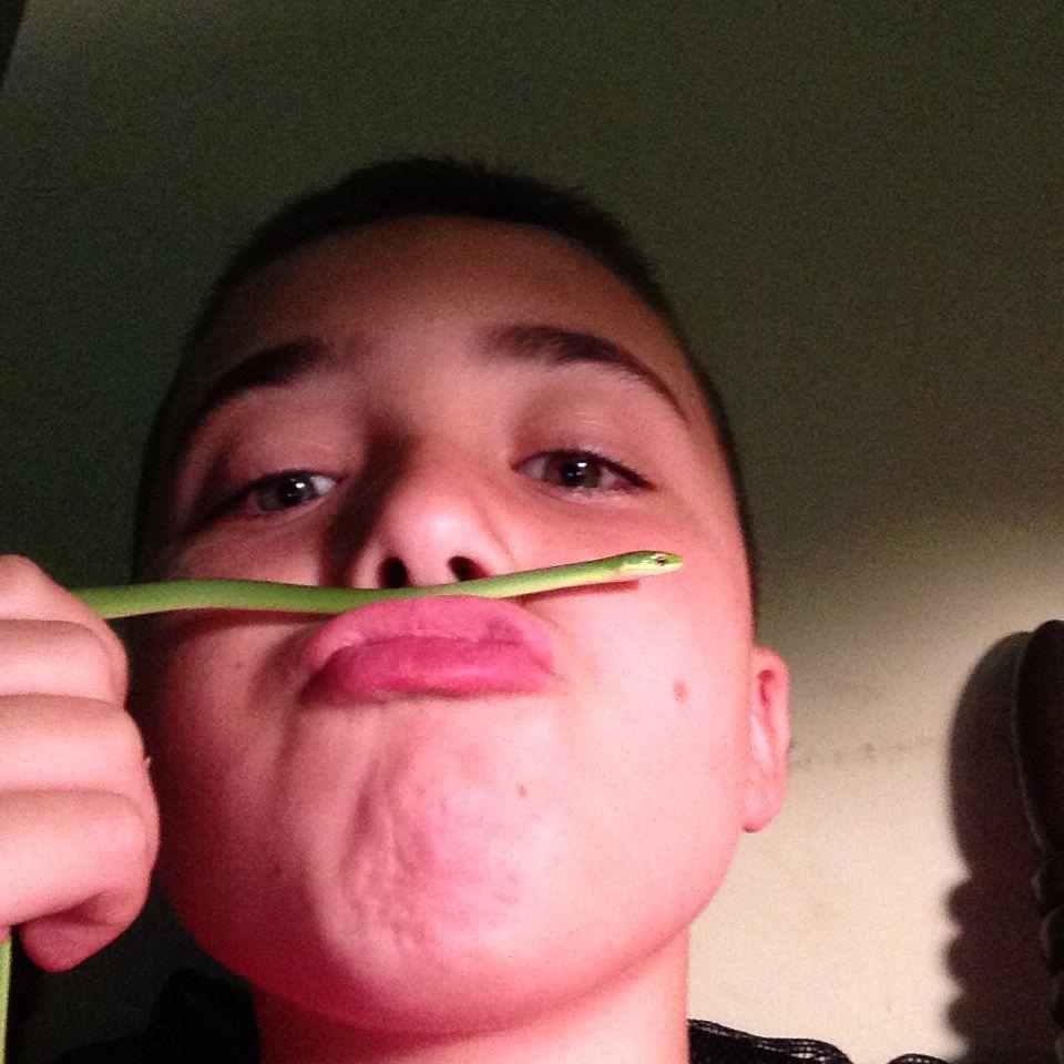 My pet moustach rgs