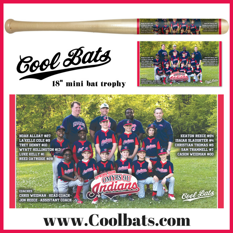 Cool Bats The Ultimate Baseball Trophy Souvenir Bats Are A Great Gift Also Check Out My Facebook Page At This Link Ht Baseball Youth Baseball Usa Baseball