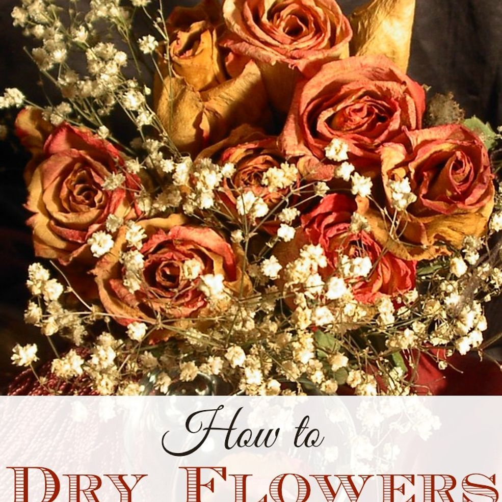How to Dry Flowers for Crafts, Potpourri or Home Decor