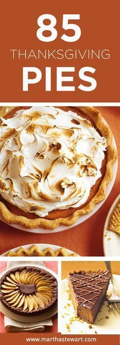 Thanksgiving Pie and Tart Recipes #thanksgivingfood