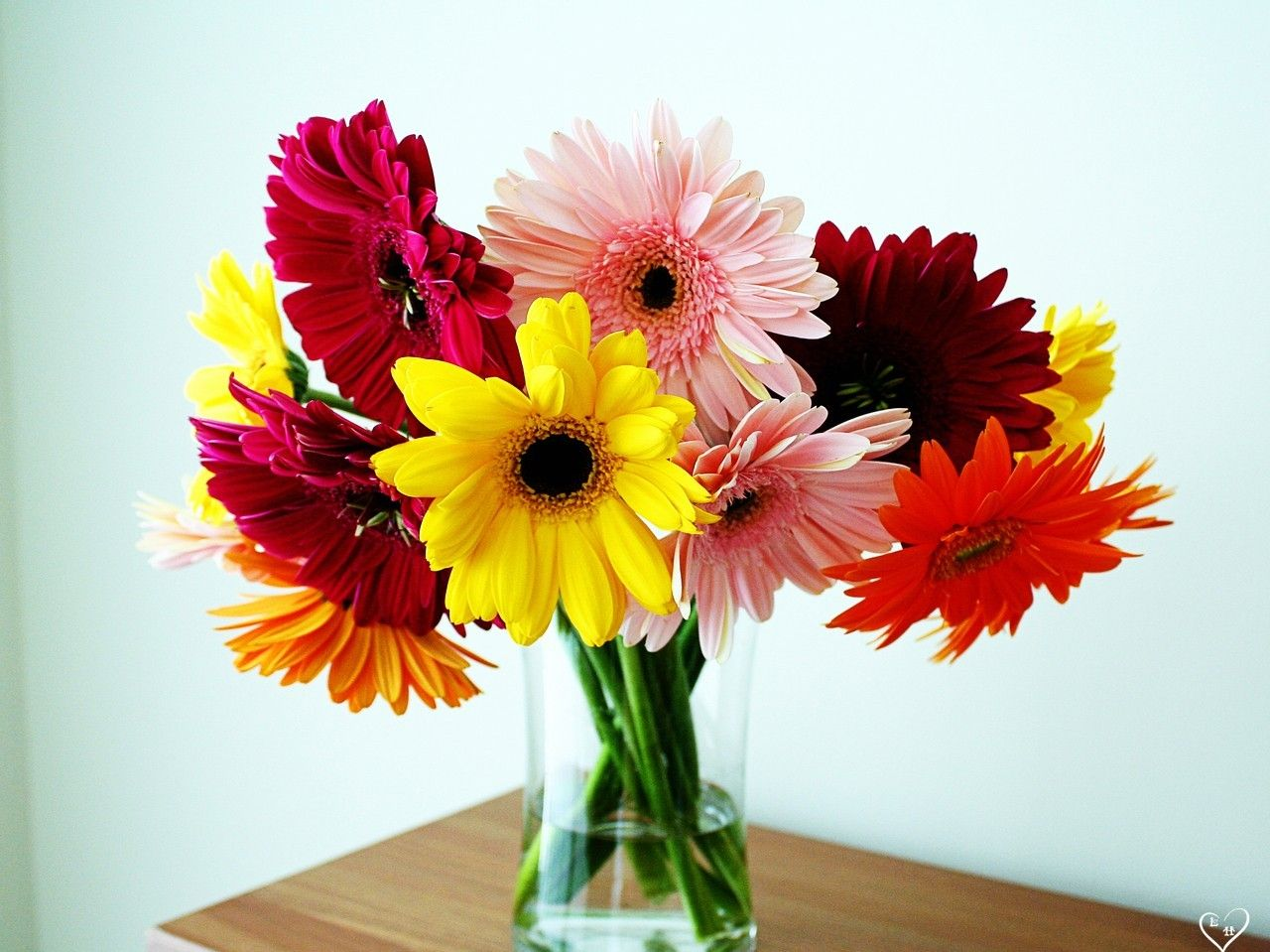 Tips to Arrange a Flower Garden And How to Do It | Beautiful flowers ...