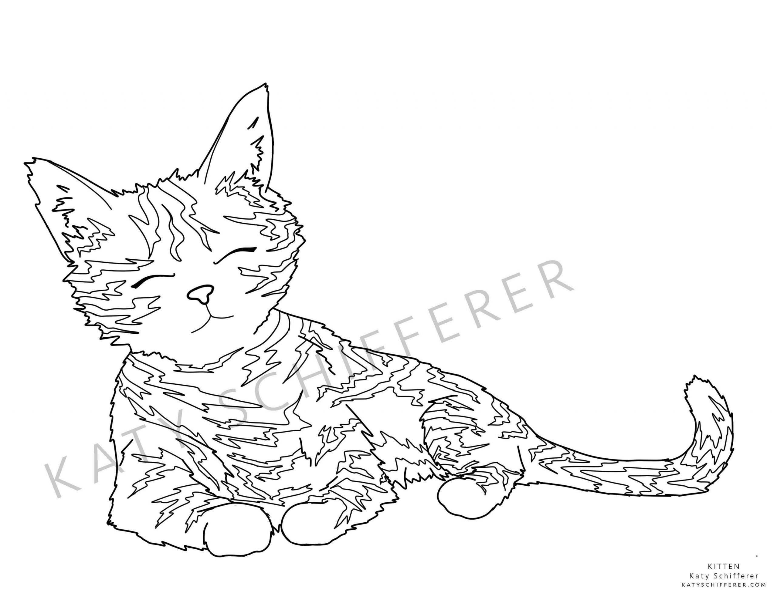 4 Worksheet Realistic Cat Coloring Pages Coloring Real Cat