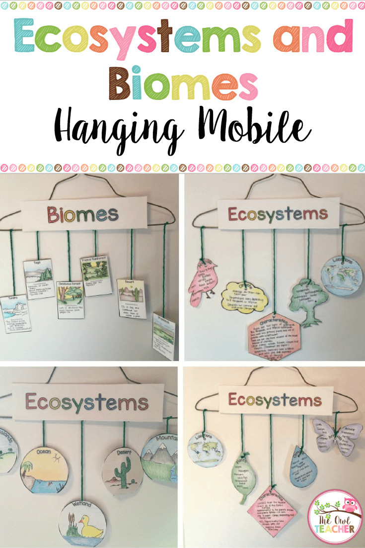 ecosystems hanging mobile biomes too teaching ideas science classroom teaching science. Black Bedroom Furniture Sets. Home Design Ideas