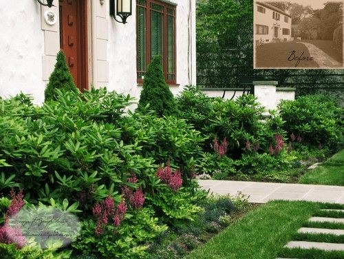 a front yard foundation planting  u0026 stone walkway  rhododendron  astilbe  pjm  and a variety of