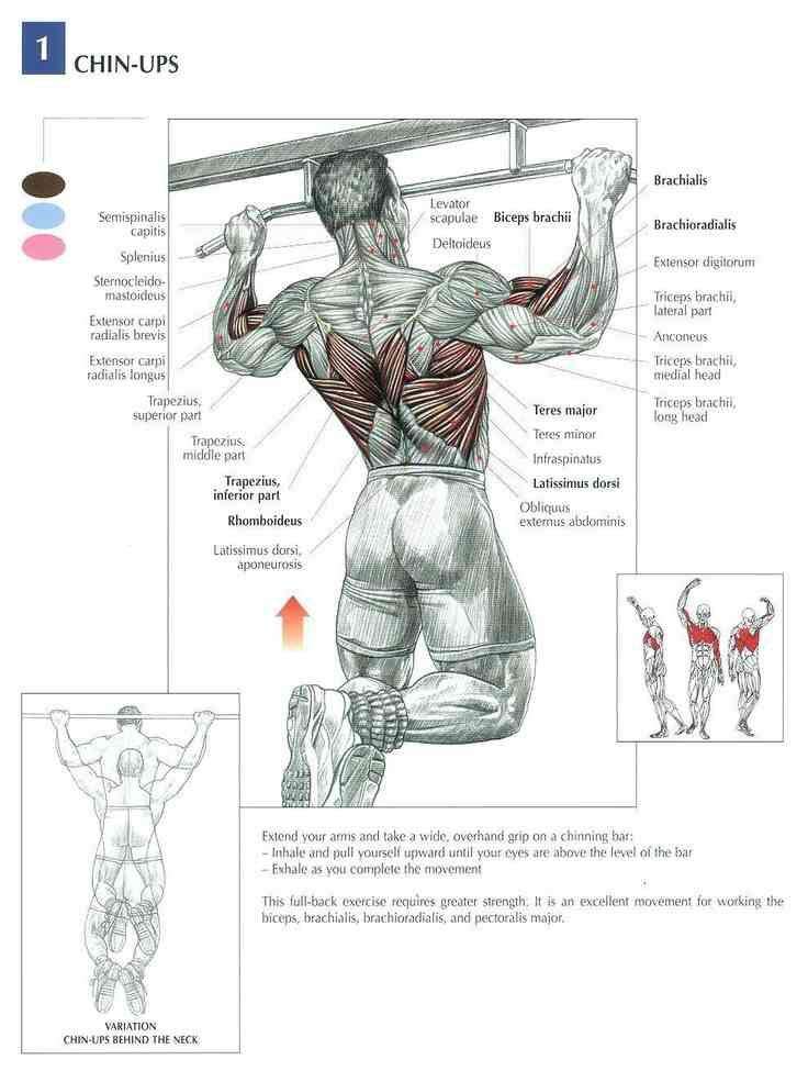 Check this effective workout technique! Like and share