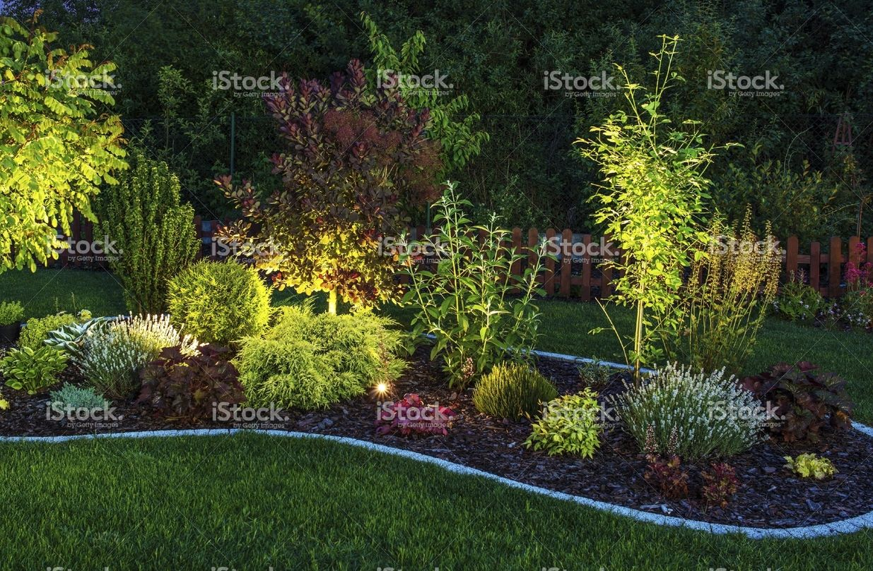 """Illuminated Garden Would love to incorporate lighting. And maybe in order to keep stuff looking nice and neat, can delineate sections of focal points with a """"border""""? Maybe just one area."""
