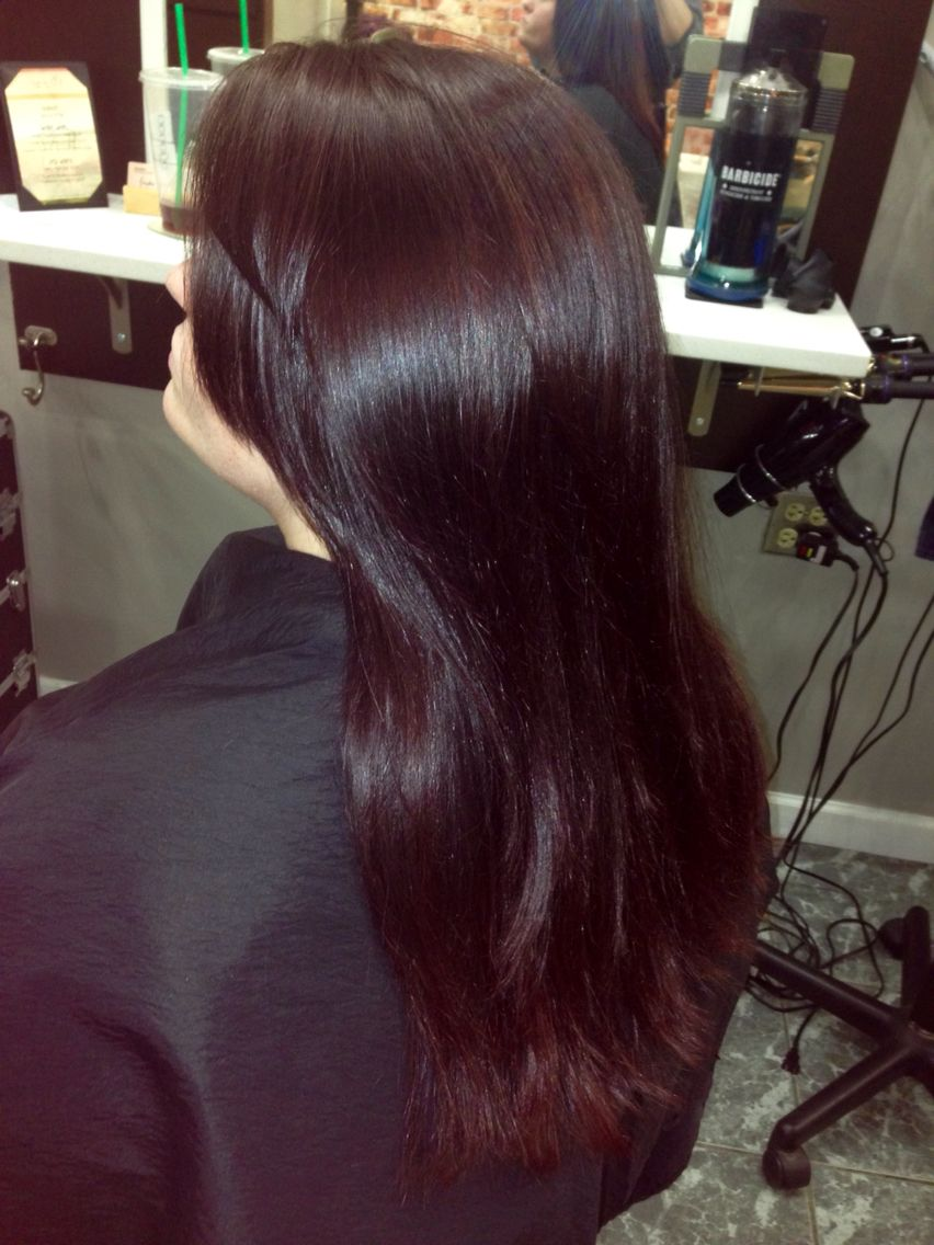 Mocha Violet Hair Color Hair Violet Hair Colors Hair