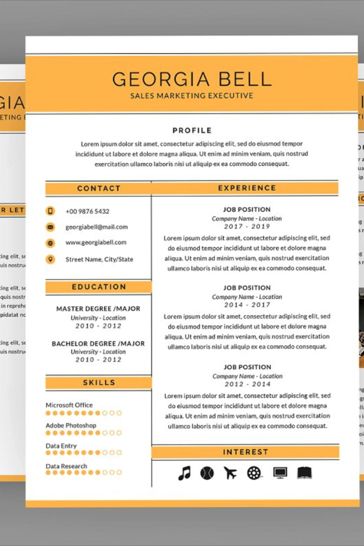 Sales Executive Resume Designer Executive resume