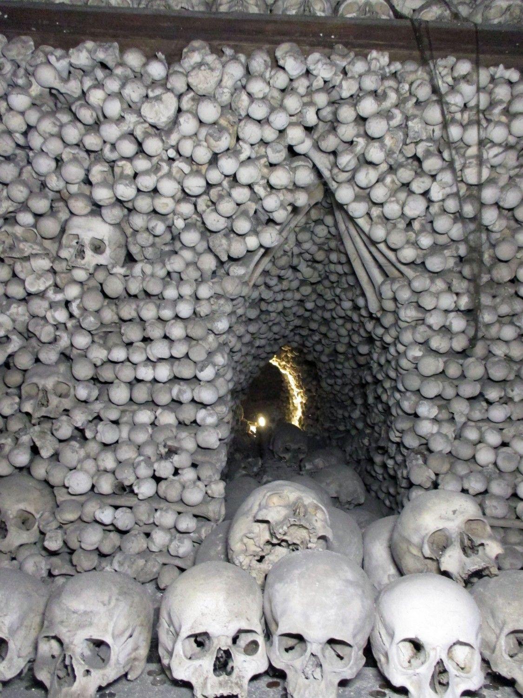 bone12