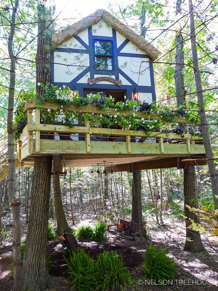 Pin By Lonnie Benson On 1111 Aaaa Treehouse House In The
