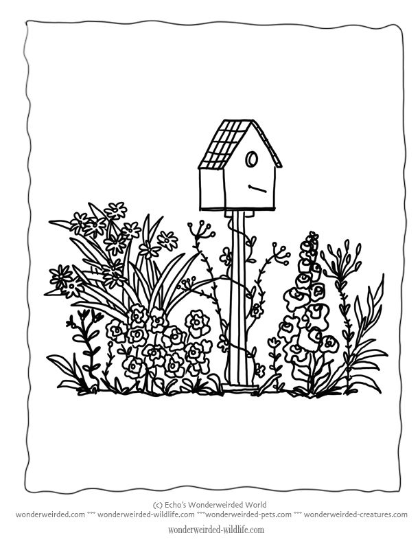 Flower Garden Coloring sheets 3 no floral lettering added A
