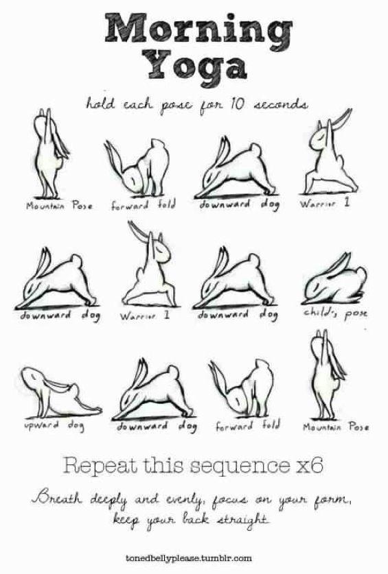 Morning Yoga Bunnies Poster Sun Salutations