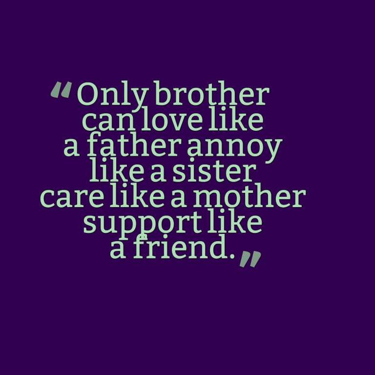Only Brother Can Love Like A Father Annoy Like A Sister Care Like A Mother Support Like A Friend Sister Quotes Brother N Sister Quotes Brother And Sister Love