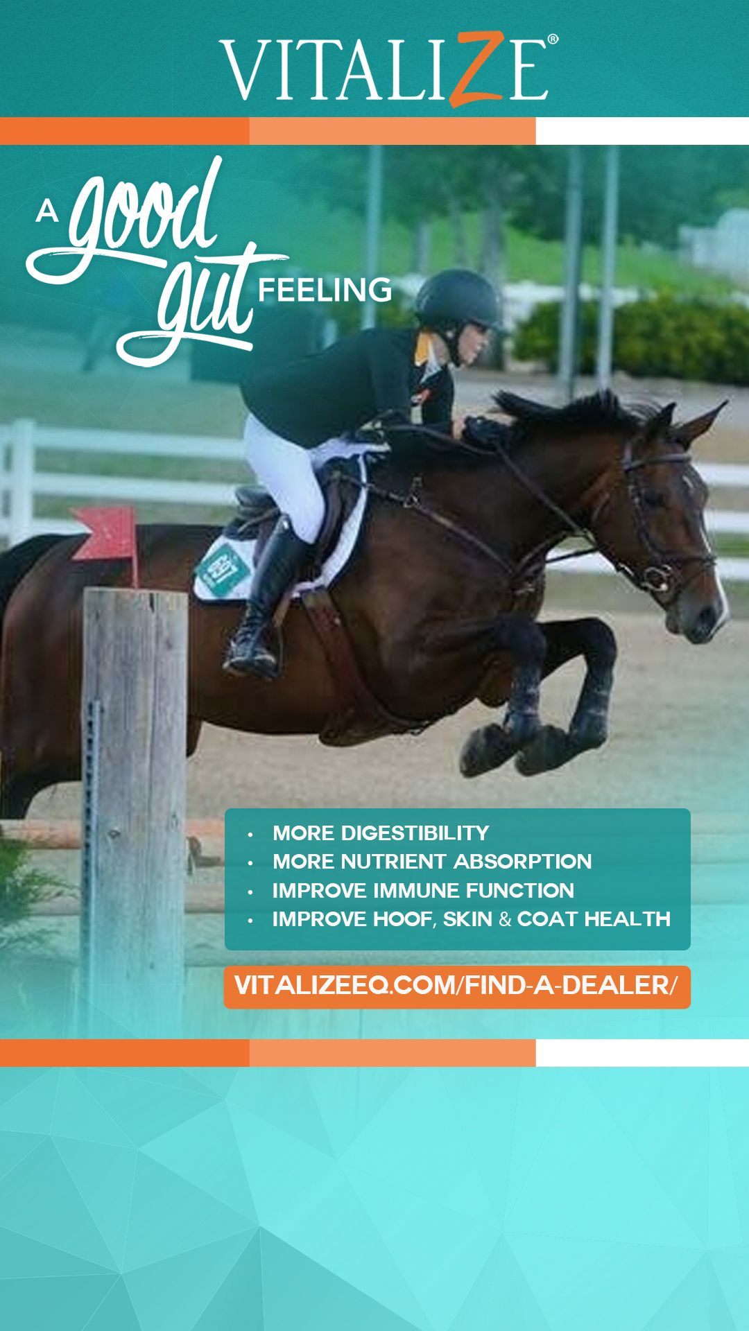 Where to Buy Vitalize Horse supplements, Equines