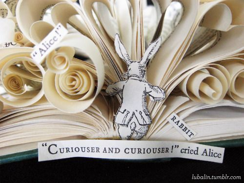 Alice in Wonderland flowers and book and rabbit down hole and saying!