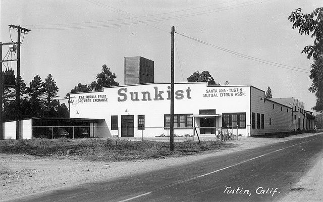 Sunkist Packing House Tustin By Orange County Archives Via