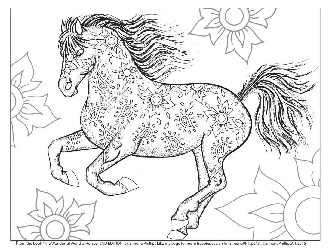 the wonderful world of horses coloring colouring book
