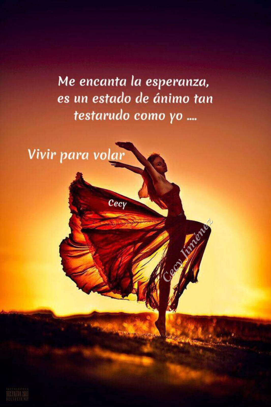 Me Encanta La Esperanza Es Un Estado De ánimo Tan Testarudo Como Yo Ich Bin Nicht Perfekt Positiv Dieser Moment