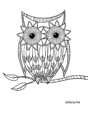 Pin On Owl Adult Coloring Pages